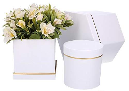 DECORPRO 3er Set Geschenkschachteln in Verschiedene Formen und Muster, rund, quadratisch, 6-eckige Dekoboxen, Blumenbox, Dekoschachteln mit Aufschrift und Deckel, (Weiß) Runde Box