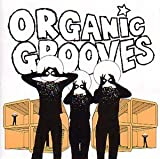 Songtexte von Organic Grooves - Organic Grooves 4: Live in New York