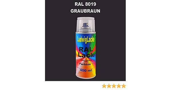 Ral 8019 Graubraun Seidenmatt 400 Ml 1k Spray Auto