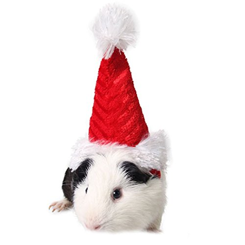 Mini-Nikolausmütze für Tiere, Hunde, Katzen, Weihnachtsmütze, Dekorationsmütze, vielseitig, rot-weiß (For Kaninchen Hamster)