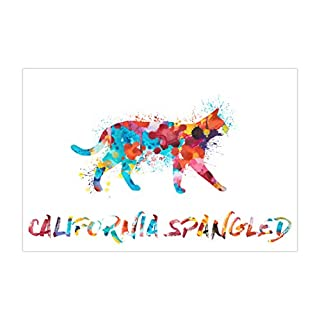 ArtsyCanvas California Spangled Watercolor Splatter Art (Poster), 36 x 24