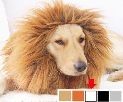 Doggie Style Store Large White Lion Mane Dog Wig Fancy