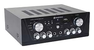 Skytronic 103.131 RMS 50 W