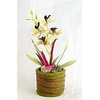 Pequeño centro de mesa con una planta de orquídea verde claro/rosa oscuro+fieltro-arreglo floral con flores artificiales
