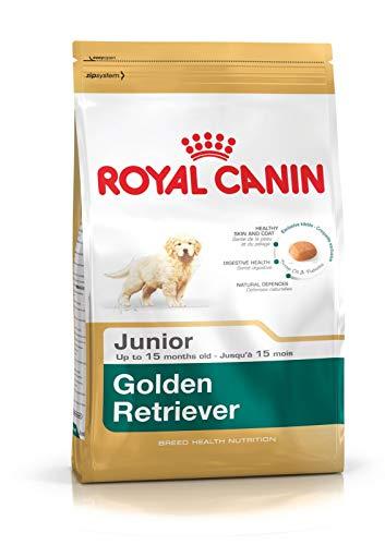 Royal Canin C-08997 S.H Golden Retriever Junior -