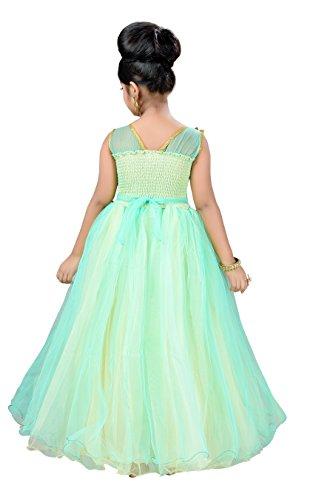 1d3fa021ecd Aarika Girl s Self Design Net Fabric Birthday Special Ball Gown ...