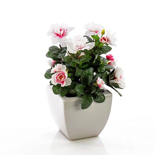 artplants – Künstliche Azalee TABITA, weiß rosa Blüten, grüne Blätter, im Keramiktopf, 20 cm – Kunstblumen/Deko Pflanze