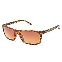 Danny Daze UV Protected Wayfarer Unisex Sunglasses (D-1707-C4|51MM|Brown Gradient)