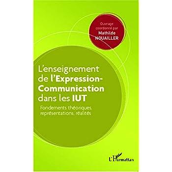 L'enseignement  de l'Expression-Communication dans les IUT: Fondements théoriques, représentations, réalités