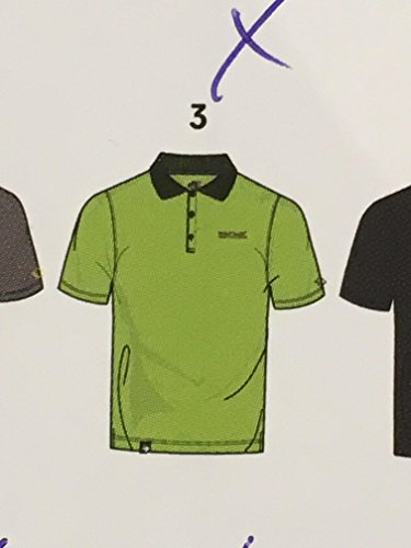 Peer Herren-Polo-Shirt Regatta schnelltrocknend mit Feuchtigkeitstransport in verschiedenen Farben erhältlich. Für Wandern und Freizeit, Lasure. Unser Sondermodell Peer Lime-Green