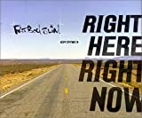Right Here Right Now by Fatboy Slim (1999-08-02) -