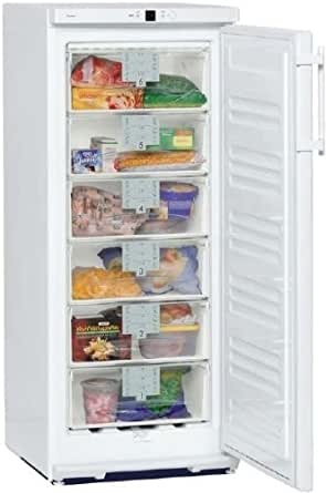 Liebherr congelateur armoire g2413-22