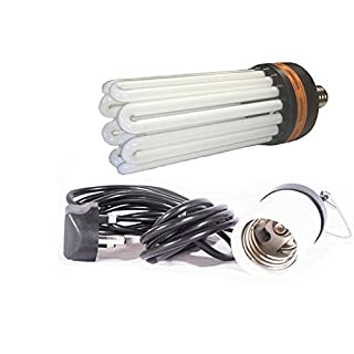 LumenLite Hydroponic Dual Spectrum CFL Bulb Indoor Growing & Flowering with Bulb holder (150 watt)