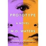 Prototype: A Novel