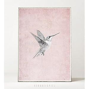 DIN A4 Kunstdruck Poster VINTAGE KOLIBRI -ungerahmt- Vogel, Vintage, Shabby Chic, abstrakt, Flug, rosa