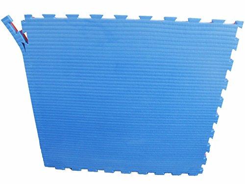 Unbekannt Judo Sportmatte Steckmatte Puzzlematte Wendematte Tatami blau rot 4 cm Härtegrad 50-55 (4500010)