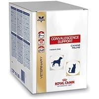 Royal Canin Convalescence Support Hund/Katze Sachet - 10x 50 g