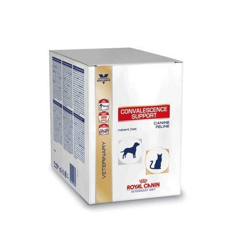 Royal Canin Convalescence Support Hund/Katze Sachet - 10 x 50 g