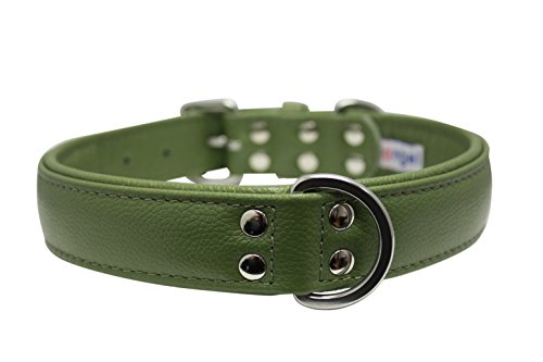Angel Pet Supplies Inc. Leder Halsband, gepolstert, 2-lagiges, 61x 3,2cm grün, Leder (Alpine) Hirte, lab, Englisch/American Bulldog -