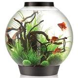 biOrb Classic 105 L Kaltwasser Komplett Aquarium Set mit intelligentem LED Licht