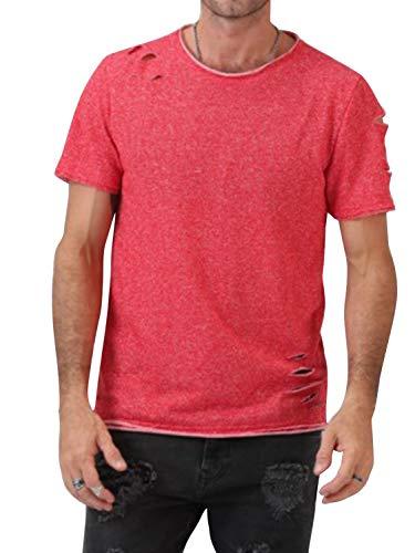 Cindeyar Herren T-Shirt Kurzarm Rundhals Basic Shirt Sommer Slim Fit Tops Baumwolle Sport Shirt