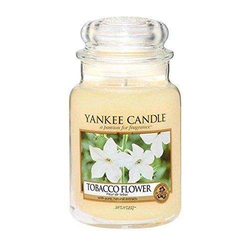 Offizielles Yankee Candle Duftkerze im Glas, Tabakblüte, 623 g