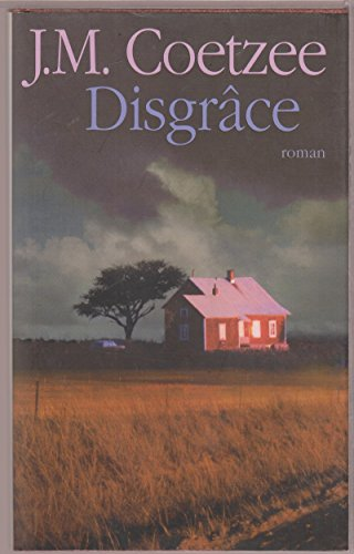 j.m. coetzee disgrace essay