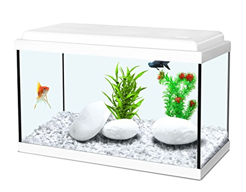 Aquarium Aquael Shrimpset 19 Litres Black To Reduce Body Weight And Prolong Life Fish & Aquariums Pet Supplies
