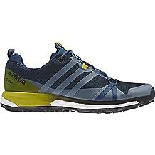 adidas Terrex Agravic Gtx, Zapatos de Senderismo para Hombre