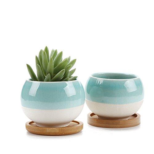 Rachel's, vaso da fiori di forma sferica, per cactus, piante grasse, piante, fiori, contenitore per fiori, fioriera, con sottovaso in bambù