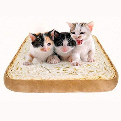 daynecety Toast Brot Pet Cat Matte Kissen Pad Schwamm weicher angenehmer Sitz Matratze Pet Supplies Kitten Puppy Sleeping Spielen Ausruhen -