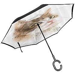 ETGeed Paraguas invertido, decoración de Gato de Paraguas Pintura de Gatito borrosa Vintage Gatito de Animal doméstico Peludo Lindo Arte de Mascotas Tan Beige