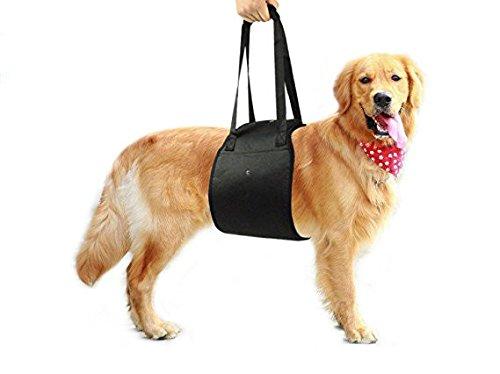 Mitefu Arnés de apoyo para la rehabilitación de perros, ayuda para levantamiento de pesas, talla XL y grande para mascotas que van arriba/abajo, para entrar y salir del vehículo