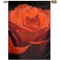 Kotdeqay Vintage Floral Red Roses Flowers Garden Yard Flag Banner for Outside House Flower Pot Double Side Print 28x40 Inch K11