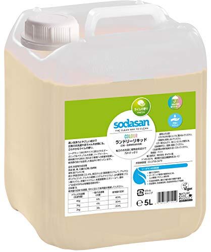 SODASAN Color Flüssigwaschmittel Limette 5 Liter - ökologisch und keine Enzyme und Phosphate, mit natürlichem Duft aus reinen ätherischen Ölen