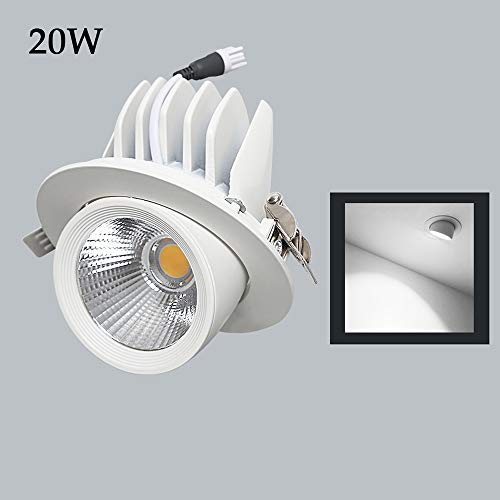 Wapipey Einstellbare 20W LED Einbauleuchte COB Deckenstrahler 85-265V 50 / 60Hz Aluminium Metall Glas Decke Einbauleuchte Innenbeleuchtung Strahler LED Driver (Color : White Light)