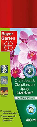 bayer-jardin-de-orquideas-84500607-y-plantas-ornamentales-de-spray-lizetanr-400-ml