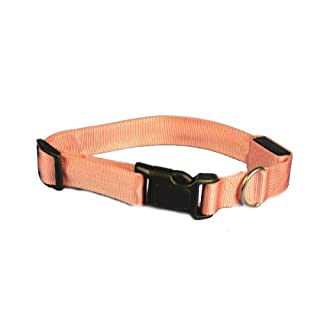 Aviditi BC704-L LED Lighted Dog Collar, Pink with Pink LED Lights, Large