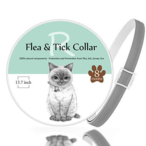 Rmolitty Flohhalsband und Zecken für Katzen, mit Kamm zur Entfernung von Flöhe und Schmutz – Beste natürliche Behandlung für Haustiere