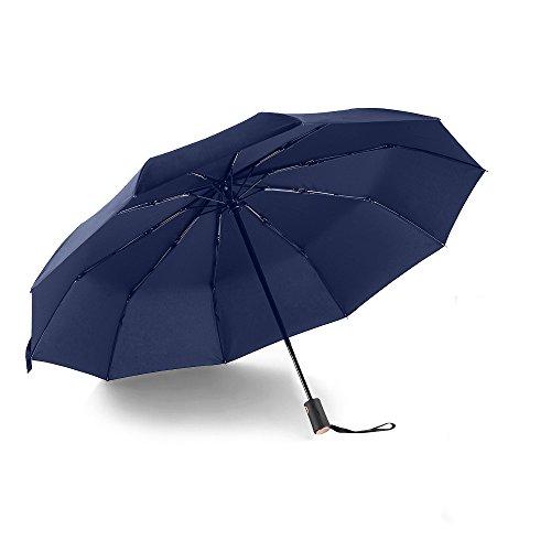 Regenschirm Taschenschirm, Bodyguard 10-Rippen Winddicht Stockschirm Automatischer Auf-Zu-Automatik - Stabiler & Kompakt - aus 210T Gewebe mit Wasserabweisende Teflon-Beschichtung - Blau