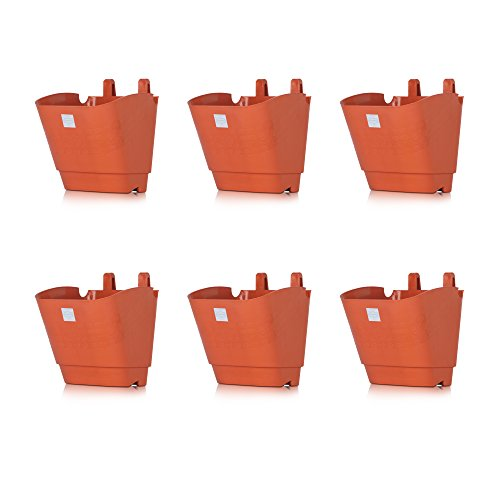 Pepper Agro Flower Pots Vertical Garden Wall Hanging Planter Terracotta Set of 6  available at amazon for Rs.346