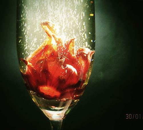 414ir5tELeL - 100 Samen Hibiscus sabdariffa, Roselle, Karkade, lecker als Tee oder im Sekt
