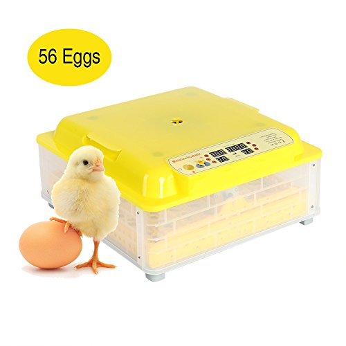 Incubatrice digitale led automatica allevatore uovo/macchina cova per 56 uova di gallina per gallina, tacchina, faraona, anatra con girauova automatico, termostato