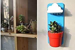 Rainy Flower Pot Hanging Wall Mount Planters Rainy Pot with Seeds Blue