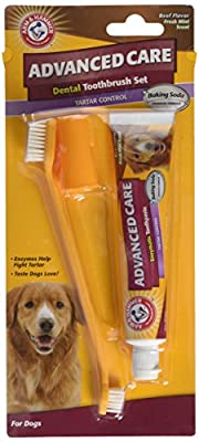 Arm & Hammer Advanced Care Tartar Control Beef Flavoured Toothpaste and Brush Set from Company Of Animals