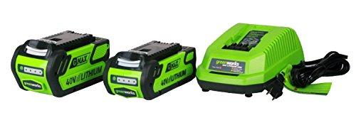 Greenworks Tools 40V Akku-Hochentaster/Astschere 20cm