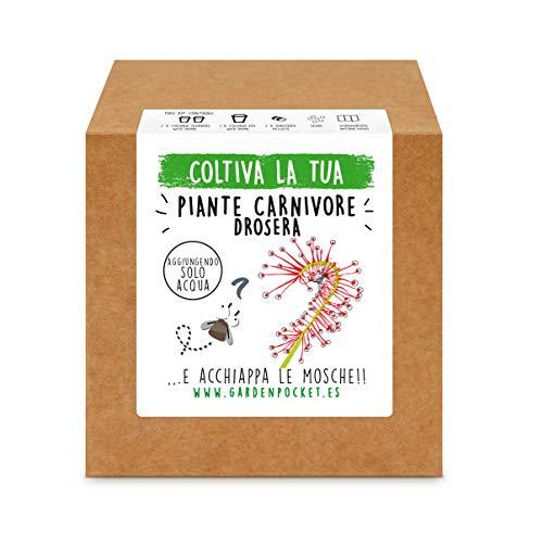 garden pocket - fai crescere la tua piante carnivore drosera - kit di germinazione