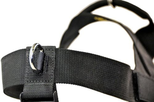 DT-Universal-No-Pull-Dog-Harness-Clear-Patches-Black-Small-Fits-Girth-Size-60cm-to-70cm