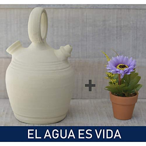 Set planta y botijo Dispensador de agua H2O, 5 lts Aprox. Sistema Natural de enfriamiento sostenible.