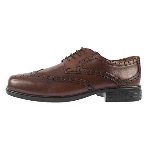 Padders Reid da uomo pelle Lace Up Brogue shoe (146/11) Brown